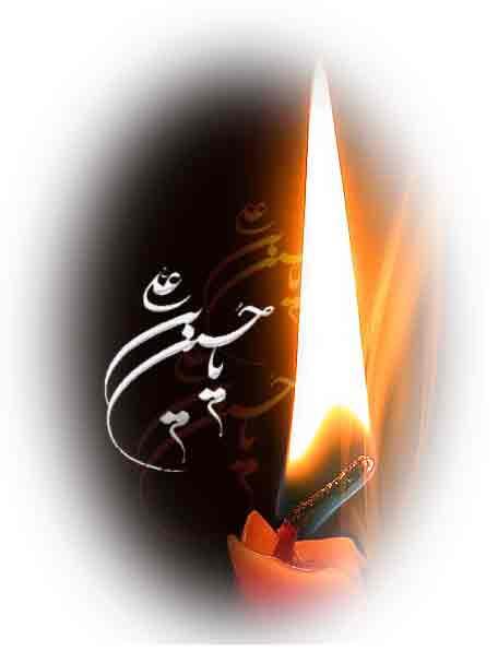 تصاویر بسیار زیبا از کربلا و حرم امام حسین علیه السلام